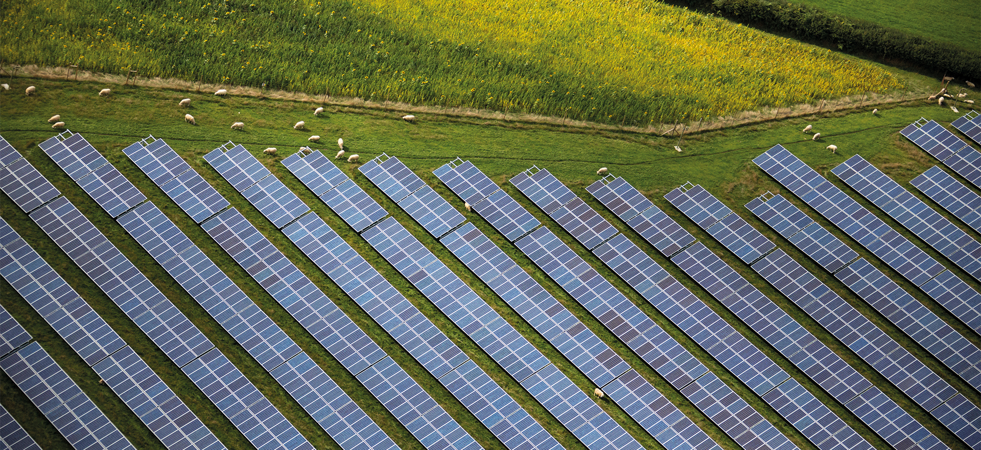 Here Comes the Sun: Where to locate the next generation of solar farm sites